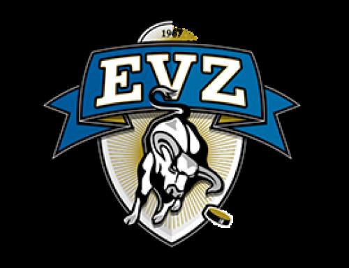 EVZ Partner